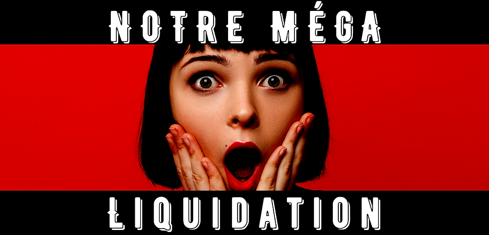 Méga_Liquidation_diapo.png