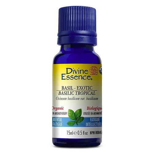 Huiles Essentielles | Divine Essence | Basilic Tropical Biologique