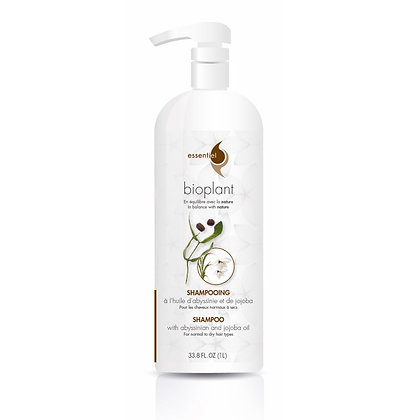 Shampoing | Huile d'Abyssinie  | Bioplant