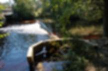 Cedar Creek Weir 091212 (10).JPG