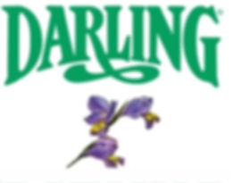 Darling Romery Logo met R.jpg