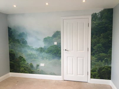 All paintwork and wallpaper mural