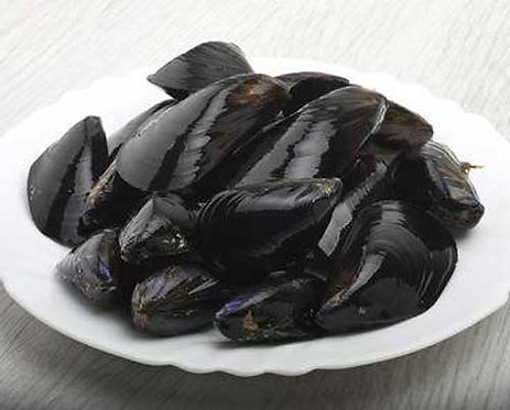 Live Shetland rope-grown mussels