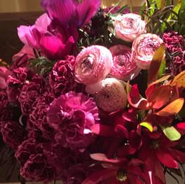 Murad, Pink Floral Close Up