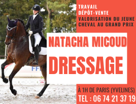 Natacha Micoud dressage.png