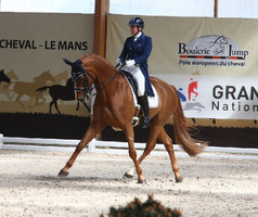 La Finale du Grand National de dressage confirmée à Equita'Lyon