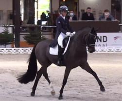 CDI 5*de Doha:le Grand Prix pour Jessica von Bredow-Morgan Barbançon et Sir Donnerhall II à + de 73%
