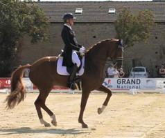 Grand Prix Spécial du Grand National de Cluny: bis repetita pour Jean Philippe Siat et Lovesong