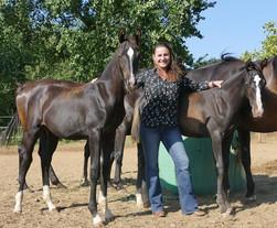 Nolwenn Rouxel : produire des poneys qui peuvent concurrencer les chevaux