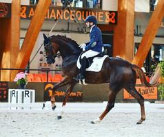 Légèrement blessée, Dancielle de Malleret forfait pour les Championnats de France Jeunes Chevaux