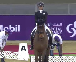 Les chevaux de dressage présents à Doha bloqués dans la base de données FEI