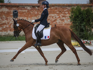 Championnats d'Europe Poneys de Strzegom : la France 10 ème