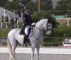 Sylvain Massa, 2 ème meilleur éleveur au monde de chevaux de dressage pour 2020