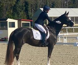 CIR du Lion d'Angers : Charlotte Chalvignac Vesin et Bella Schoccolina sèment la concurrence