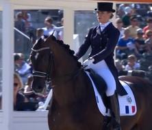 Top 10 des chevaux de dressage français les mieux indicés en 2020