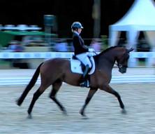 Une fille de Don Juan de Hus prend la main sur le Championnat allemand des 4 ans