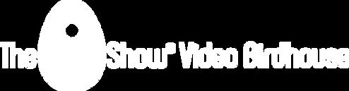 Special Logo VB KO.png