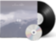 The Seasons vinyl_transparent.png