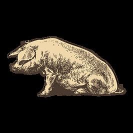 cerdo que se sienta