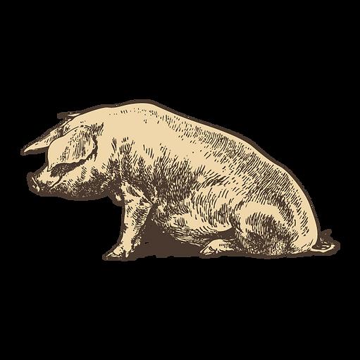 Seduto Pig