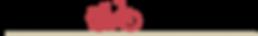 EVA RUIZ logo2.png