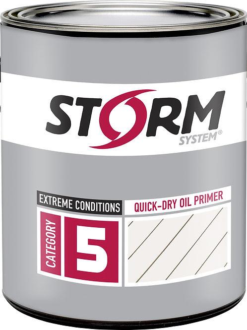 Storm Category 5 Primer
