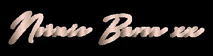 Signature Noemie Baron xx Satin rose.png