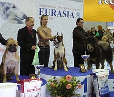 eurasia_08_3.jpg
