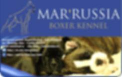 Рекламный блок Мар Руссиа.jpg