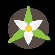 DBN logo2-01.png