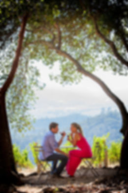 marriage proposal photography napa valley