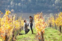Marriage Proposal Napa Valley