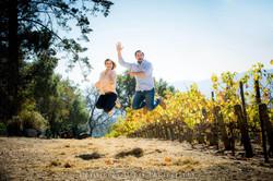 Wedding Proposal Napa Valley