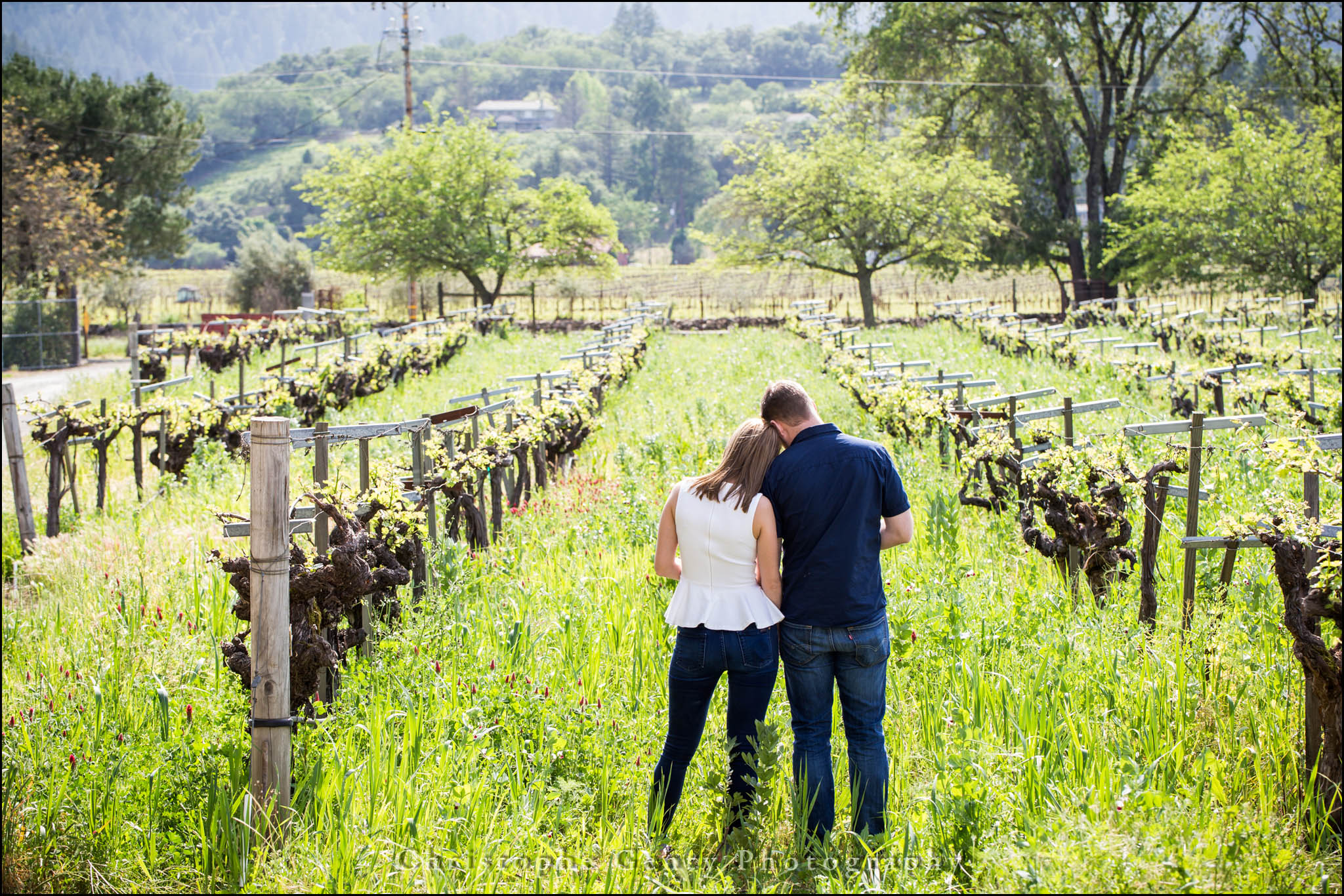 Napa Marriage Proposal Photography