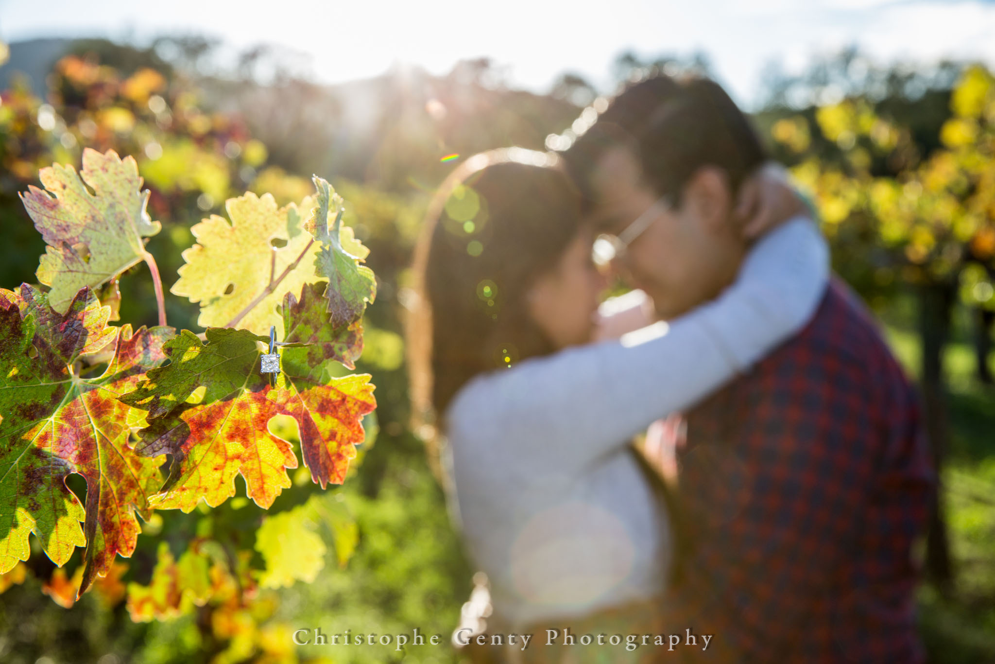 TudalWinery-Marriage-Proposal-Photography-137