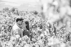 Amizetta-Marriage-Proposal-Photography-117