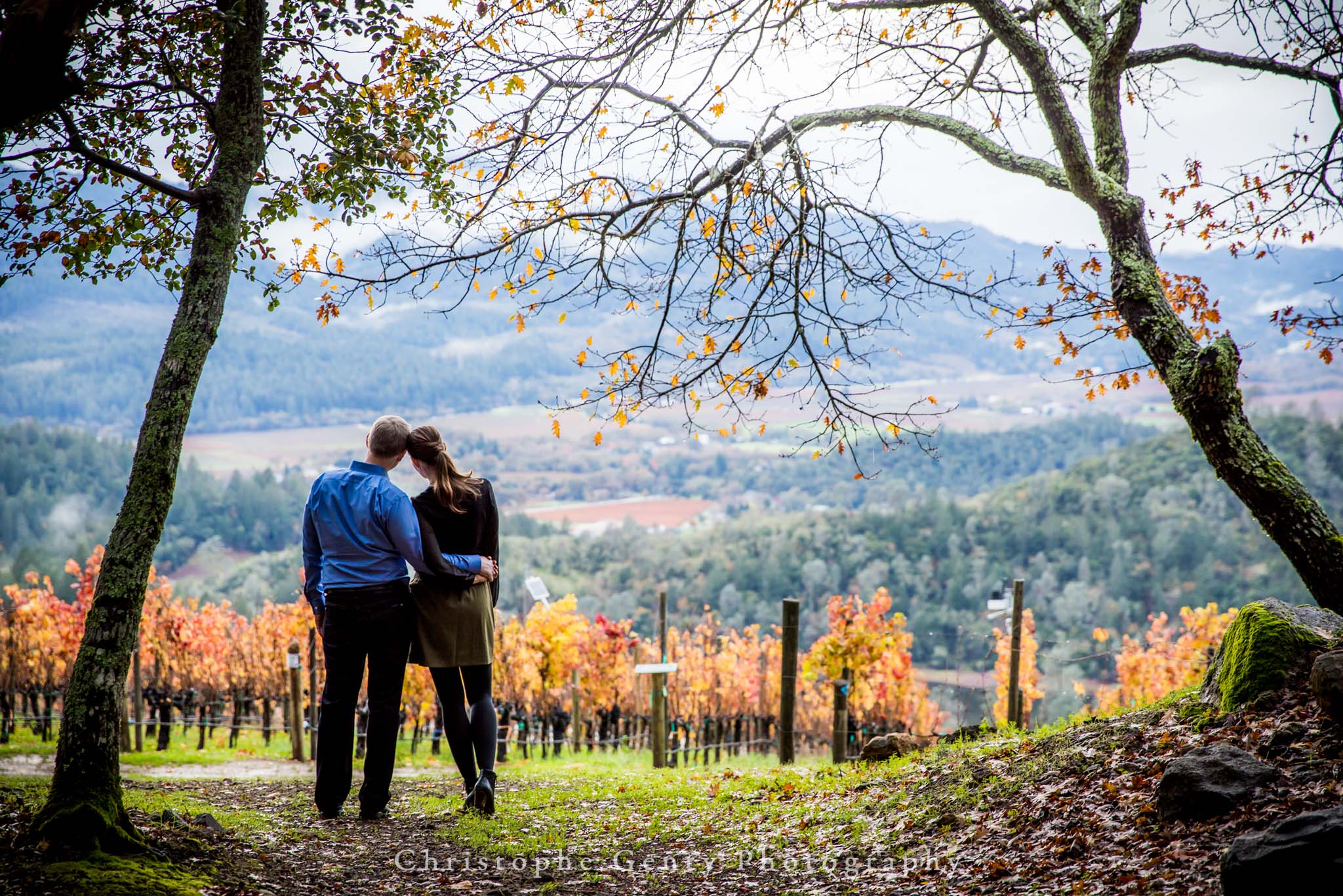 Napa-Marriage-Proposal-Photography-129