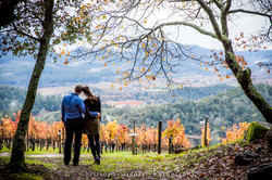 Napa-Marriage-Proposal-Photography-129