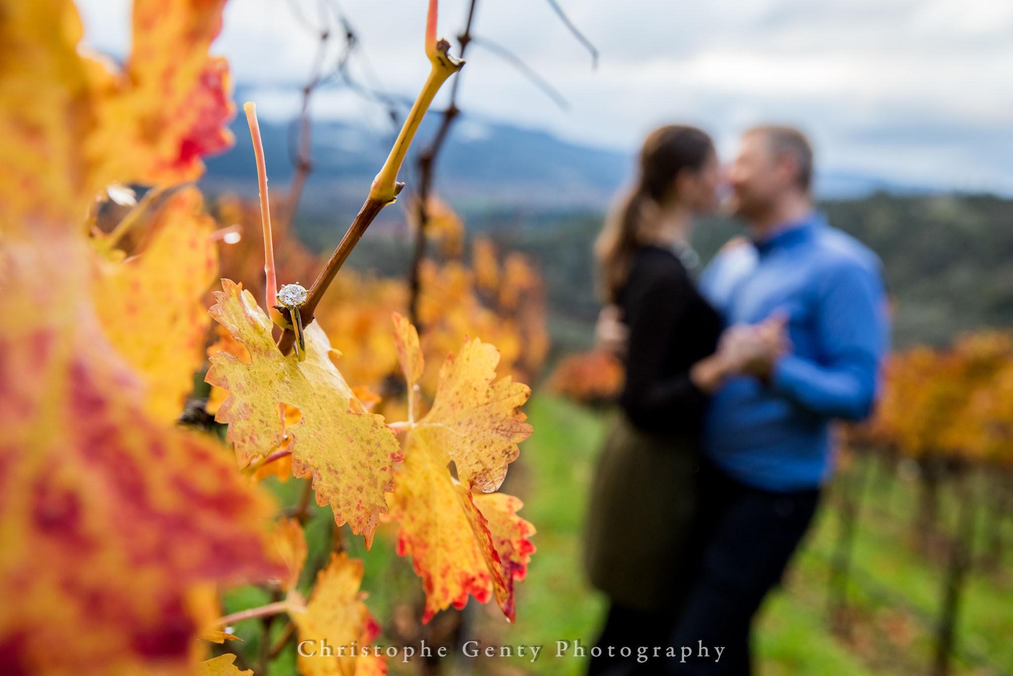 Napa-Marriage-Proposal-Photography-126