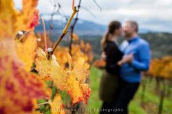 Napa-Marriage-Proposal-Photography-126