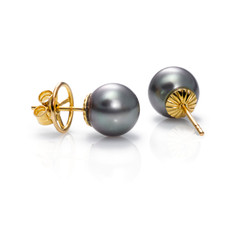 Tahiti cultured pearls earrings