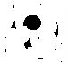 logo-hvit.png