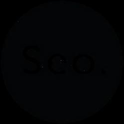 seo-logo-minuscula-negro.png