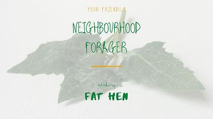 NF-FatHen.jpg