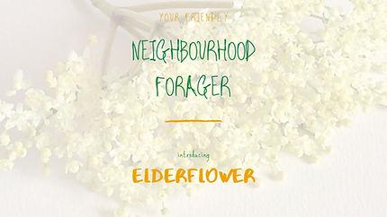 NF-Elderflower.jpg