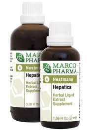 Hepatica No.4
