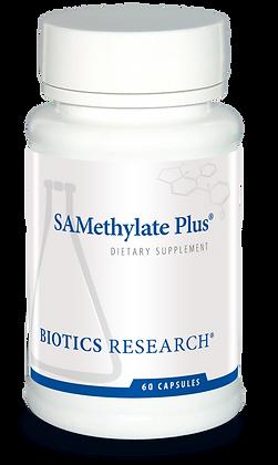 SAMethylate Plus (60C)
