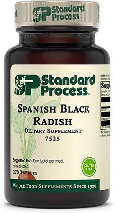 Spanish Black Radish (270T)