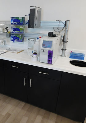 Mdular Lab Casework