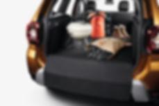 21200053_2017_-_Nouveau_Dacia_DUSTER.jpg